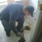 All About Sewer And Drain Cleaning